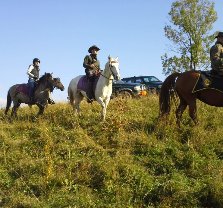 Jazda konna western kowboj panderoza